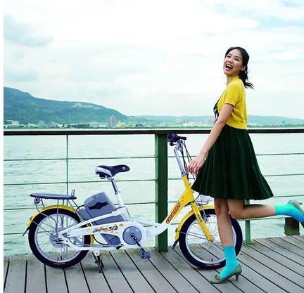 电动自行车企业要想求发展该把好那几道关?