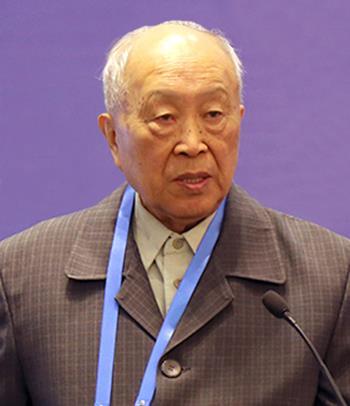 中国工程院院士杨裕生:用好当前电池技术 合理提升电动汽车速