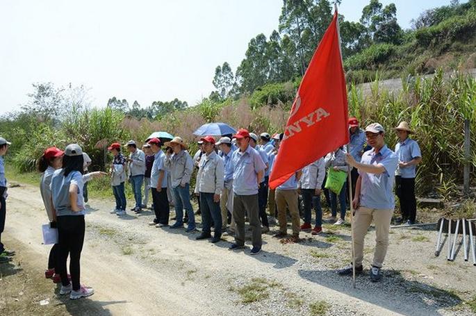 行走在爱护地球的道路上-记三雅公益植树护林活动